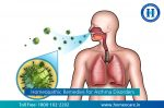 Homeopathic Remedies for Asthma Disorder