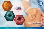 How Dengue Fever Effect on Health?